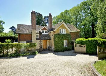Thumbnail 4 bed detached house to rent in Hascombe Road, Godalming
