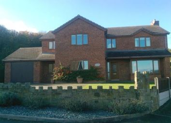 Thumbnail Detached house for sale in Maes Megan, New Road, Gwespyr, Holywell