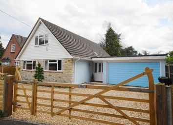 Thumbnail 4 bed bungalow for sale in The Avenue, West Moors, Ferndown