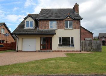 Thumbnail 4 bed detached house for sale in Riverford, Whitehead
