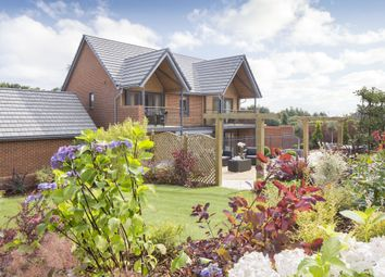 "Thumbnail 5 bed detached house for sale in ""Ula"" at Bedhampton Hill, Bedhampton, Havant"