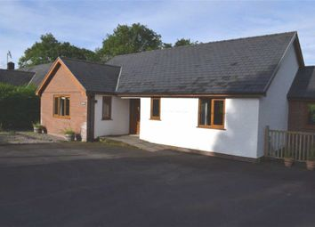 Thumbnail 2 bed detached bungalow to rent in Hendre, Cwmllinau, Nr Machynlleth, Powys