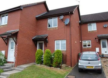 Thumbnail 2 bed terraced house to rent in Foxglove Rise, Cornflower Hill, Exwick, Exeter