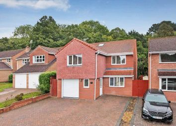 Thumbnail 4 bed detached house for sale in Canterbury Way, Exmouth