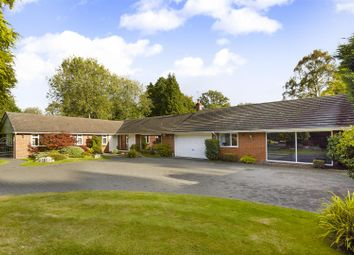 Thumbnail 5 bedroom bungalow for sale in Glen Close, Kingswood, Tadworth