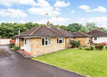 Thumbnail 2 bed bungalow to rent in Cootes Avenue, Horsham