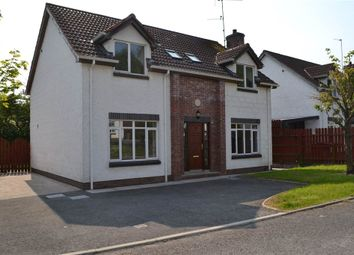 Thumbnail 4 bed detached house for sale in 14, Drumgarrow Court, Enniskillen