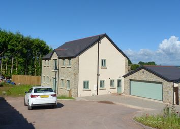Thumbnail 4 bed detached house for sale in Joys Green Road, Lydbrook