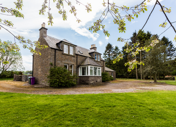 Thumbnail 3 bedroom detached house to rent in Lovehall Farm Cottage Lovehall Road, Wellbank