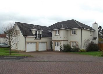 Thumbnail 5 bed detached house to rent in Bellefield Way, Lanark