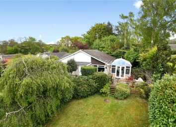 Thumbnail 4 bed detached bungalow for sale in Alphington Avenue, Frimley, Camberley, Surrey