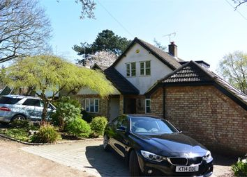 Thumbnail 4 bed detached house to rent in Bossington Lane, Leighton Buzzard, Bedfordshire