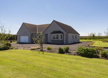 Thumbnail 3 bedroom bungalow for sale in Auckengill, Wick, Caithness, Highland