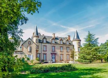 Thumbnail 16 bed equestrian property for sale in 03220 Saint-Léon, France