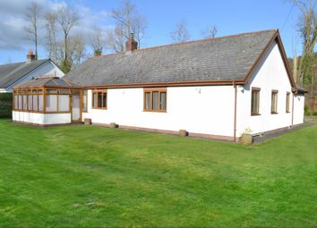 Thumbnail 4 bed bungalow for sale in Llandinam, Powys