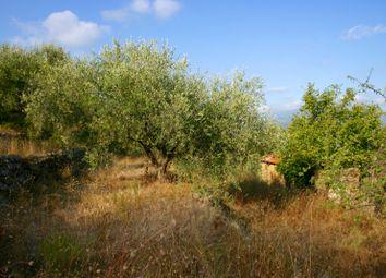 Thumbnail Land for sale in Da 547 - Strada Vicinale Pozzuolo, Dolceacqua, Imperia, Liguria, Italy