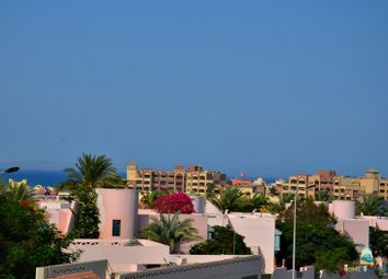 Thumbnail 1 bed apartment for sale in 01 Bedroom Sea View Apartment, Florenza Khamsin, Hurghada, Egypt
