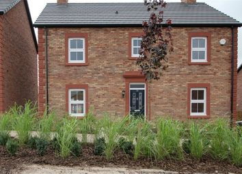Thumbnail 4 bed detached house to rent in 24 Goldington Drive, Bongate Cross, Appleby-In-Westmorland, Cumbria