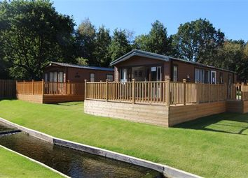 Thumbnail 2 bedroom detached house for sale in Chamonix Lodge, Colchester Holiday Park, Cymbeline Way, Colchester