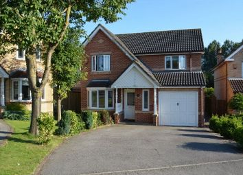 Thumbnail 4 bed detached house to rent in Baldwin Avenue, Bottesford, Scunthorpe