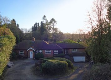 Thumbnail 4 bedroom detached bungalow to rent in Hale House Lane, Churt, Farnham