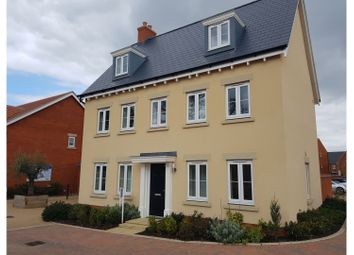 Thumbnail 5 bed detached house to rent in Bromham Road, Bedford
