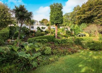 Thumbnail 4 bedroom detached house for sale in St Austell, Cornwall, Uk