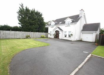 Thumbnail 4 bed detached house for sale in Glen Valley, Annahilt, Down