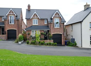 Thumbnail 4 bedroom detached house for sale in Tullynagardy Brae, Newtownards