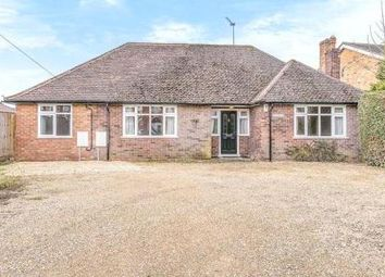 Thumbnail 4 bed bungalow for sale in Detached Bungalow. Lovel Road, Winkfield, Berkshire