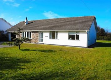 Thumbnail 3 bed bungalow to rent in Rock Road, St. Minver, Wadebridge