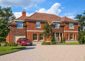 Thumbnail 5 bed detached house for sale in Bragbury Lane, Bragbury End, Hertfordshire