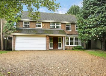 5 bed detached house to rent in Church Road, Ham, Richmond TW10