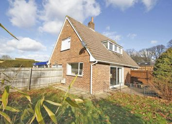 Thumbnail 4 bed detached house to rent in Ringwood Road, Bransgore, Christchurch