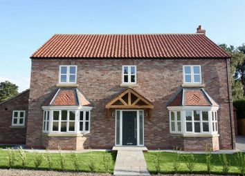 Thumbnail 5 bed detached house for sale in Back Lane, Allerthorpe, York
