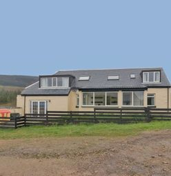 Thumbnail 6 bed property for sale in Kildonan, Isle Of Arran
