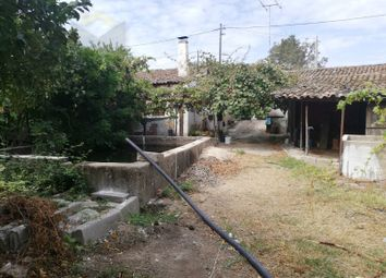 Thumbnail Country house for sale in Castelo Branco, Castelo Branco, Castelo Branco