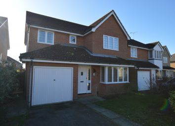 Thumbnail 4 bed detached house to rent in Wryneck Close, Colchester