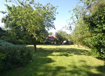 Thumbnail 4 bed detached house to rent in Nedging Hall Cottages, Hadleigh Road, Nedging Tye, Ipswich