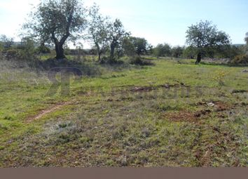Thumbnail Land for sale in Santa Catarina Da Fonte Do Bispo, Tavira, Faro