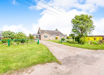 Thumbnail 4 bedroom detached bungalow for sale in Mill Road, Walpole Highway, Wisbech