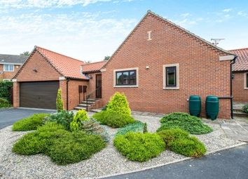 Thumbnail 3 bed bungalow for sale in Sharow, Ripon, North Yorkshire, .