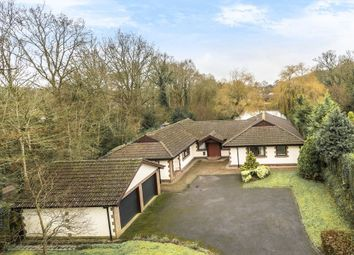 4 bed detached bungalow for sale in Greywaters Drive, Bramley, Guildford GU5