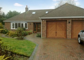Thumbnail 4 bedroom detached bungalow for sale in Snowberry Close, Taverham, Norwich