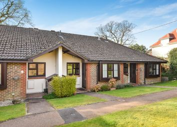 Thumbnail 2 bed terraced bungalow for sale in Ash Grove, Fernhurst, Haslemere