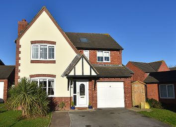Thumbnail 5 bed detached house to rent in Edgbaston Mead, Exeter