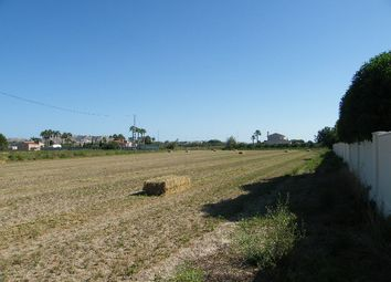 Thumbnail Land for sale in Daya Vieja, Spain