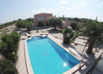 Thumbnail 4 bed country house for sale in Valencia, Alicante, Elche