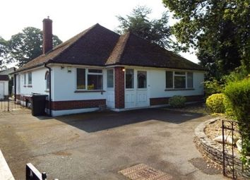 Thumbnail 3 bed bungalow to rent in Southwood Close, Ferndown