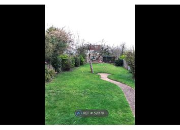 Thumbnail 3 bed semi-detached house to rent in Carolina Road, Thornton Heath